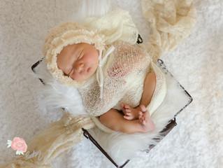 Newborns, Newborns Everywhere! - Ottawa Newborn Photographer