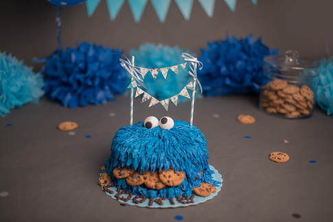 Erika Michelle Photography - Ottawa cake smash photography