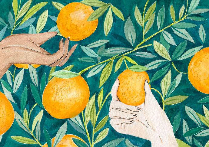 orange pickers 3.jpg