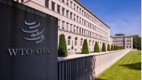 COVID-19-Informationsseite der WTO