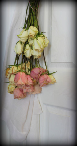 apron roses 3 9-1-2013 2-05-44 AM 2756x5178.JPG