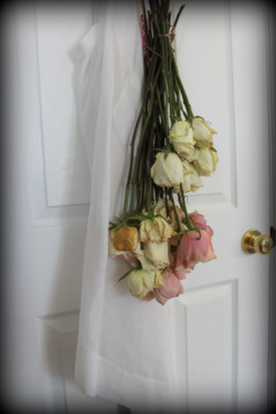 aprons roses 2 9-1-2013 2-05-39 AM 3456x5184.JPG