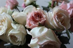 Drowsy summer roses 8-28-2013 11-48-37 PM 5184x3456.JPG