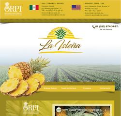 Organizacion Piñera de Alta Calidad S.P.R. de R.L.