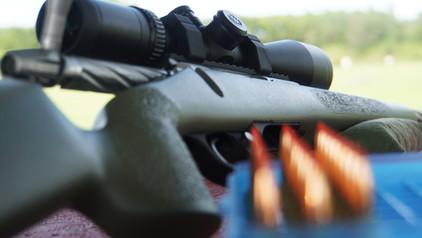 bullets gun.jpg