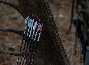 arrow antlers.jpg