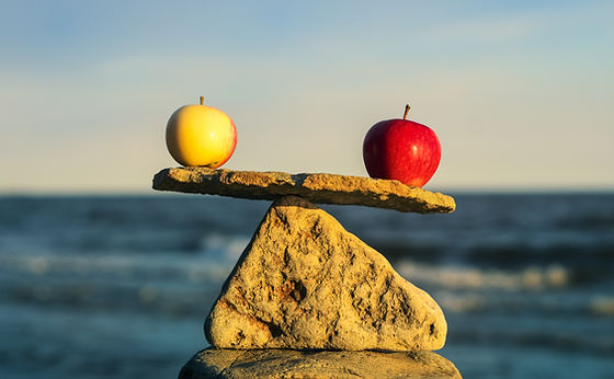 stone scale with apples