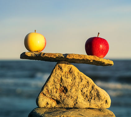 Weight Management Nutritionist Dietitian Acupuncturist in NY