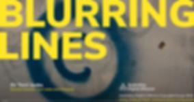 Blurring Lines ADA talk photo.PNG