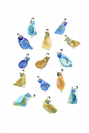 quails.jpg