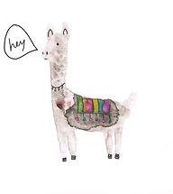 llama_hey.jpg