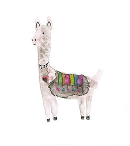 llama_white background.jpg