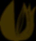 lila_logo_braun.png