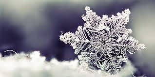 snowflake_winter_house_tips.jpg