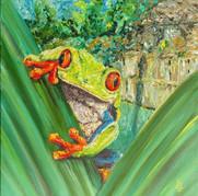 ZOOmington Frog