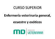 IMAGEN_CURSO_SUPERIOR_EN_ENFERMERÍA_VETE