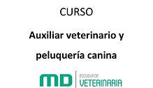 IMAGEN_AUXILIAR_VETERINARIO_Y_PELUQUERÍA