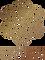 Logo Copper.png