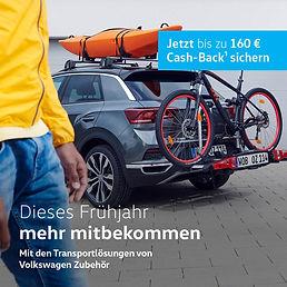 Fahrradträger Cash-Back.jpg