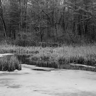 Haggetts Pond