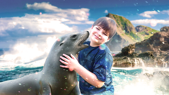 Kai Zander rescued an injured sea lion off the North Shore coast, and now he and Scrub are besties.