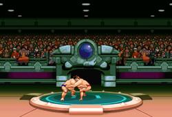 Sumobot - GameboyAdvance - 2001