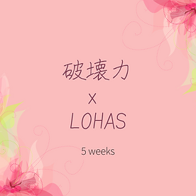 破壊力 x LOHAS