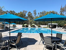 Pool umbrellas.JPG