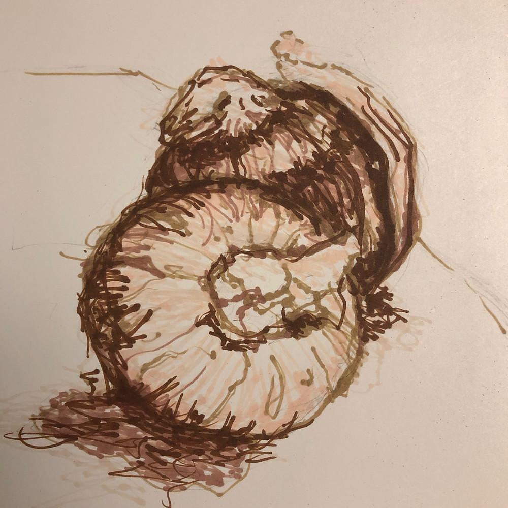 still life-onions 09.12.19