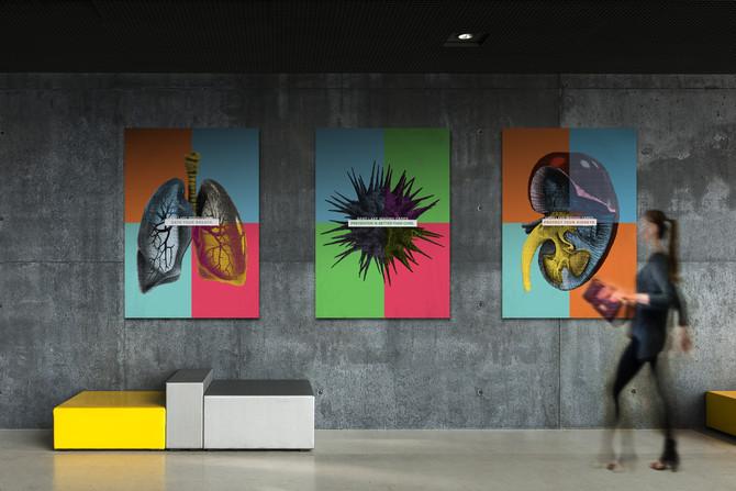 Warhol-Inspired National Health Awareness Campaign Kicks-Off a Year of Wellness for Sand Lake Imagin