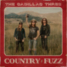 Country Fuzz Cover.jpg