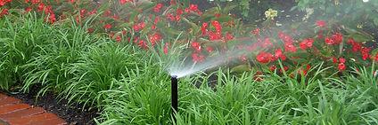 Irrigation Fourways