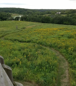 View from at Annett Nature Center & Park