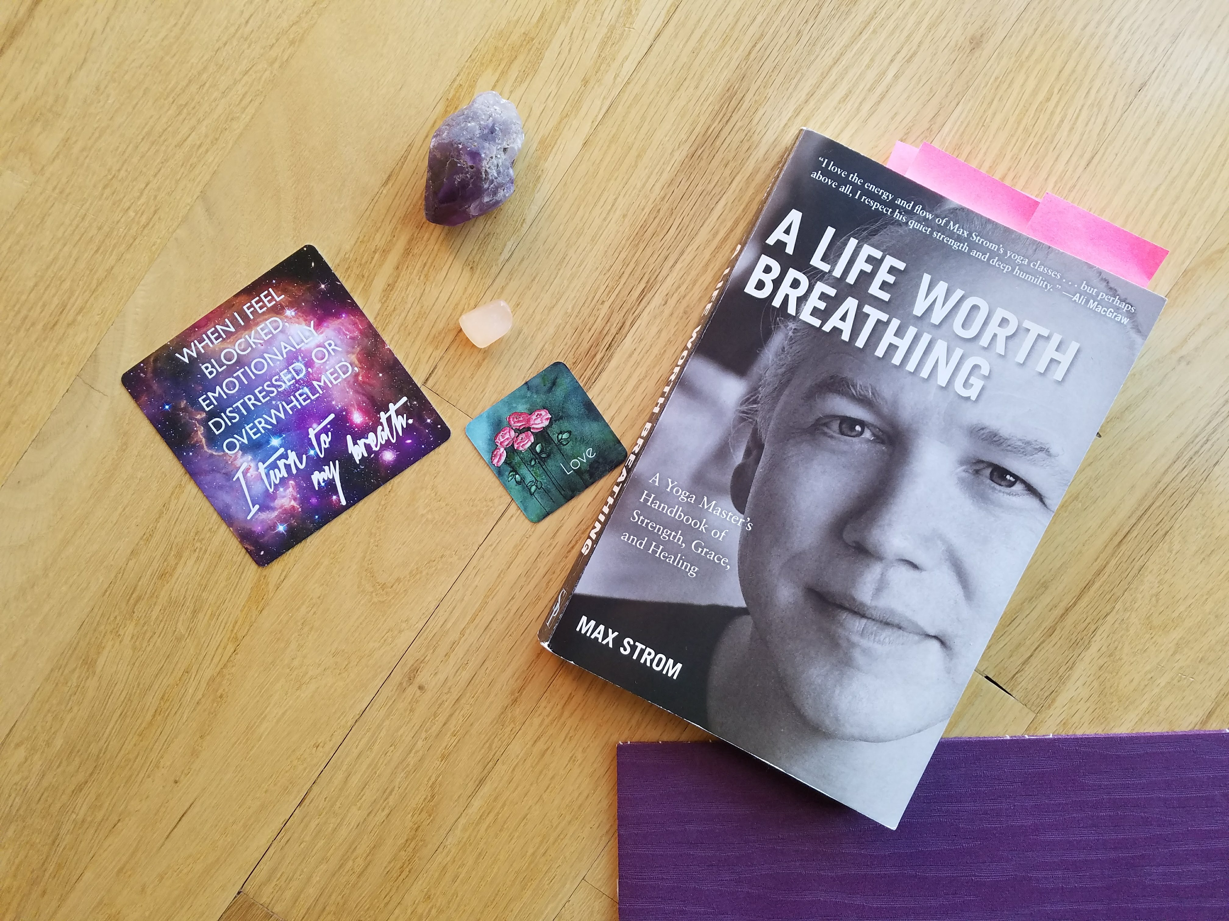 a life worth breathing a yoga masters handbook of strength grace and healing