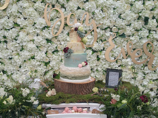 Northbrook Park Wedding cake and treats