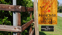 Hanover Park Vineyard - Experience Southern France in Yadkin County
