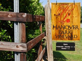 Hanover Park Vineyard - Experience Southern France in Yadkin County