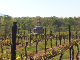 Russian Chapel Hills Winery - Iconic Wines