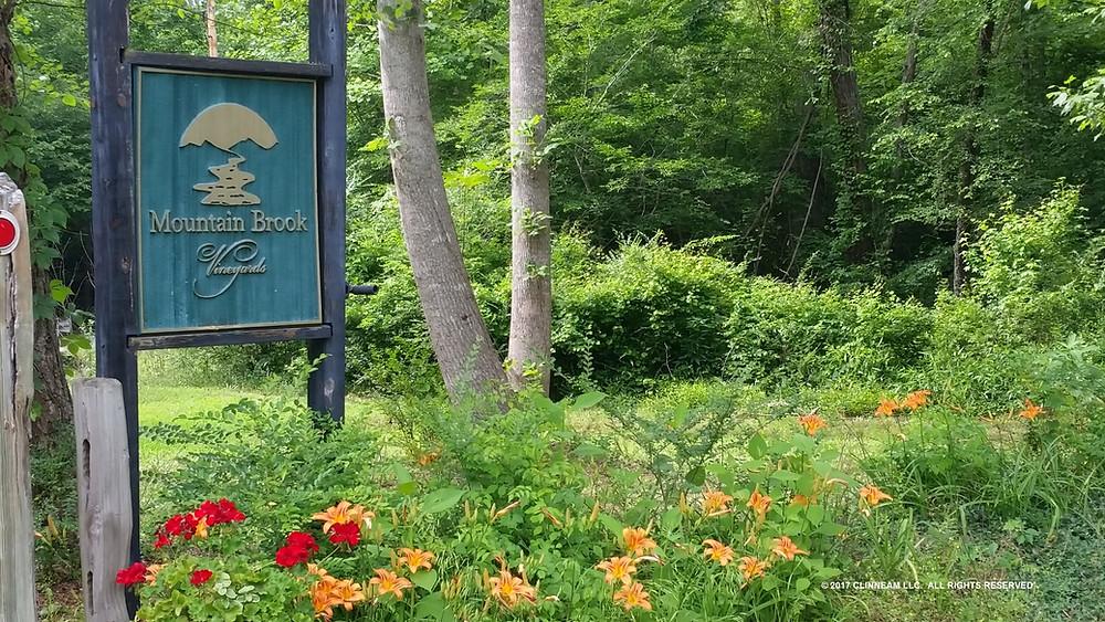 Mountain Brook Vineyards - Tryon NC