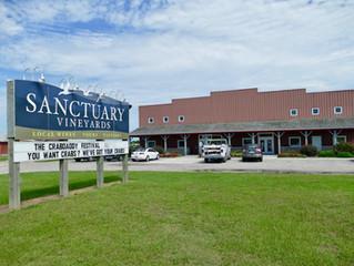 Sanctuary Vineyards - The Beach Vineyard