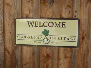 Carolina Heritage Vineyard & Winery - Organic Growth in NC Wines