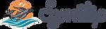 symitop-logo-2-300x82.png