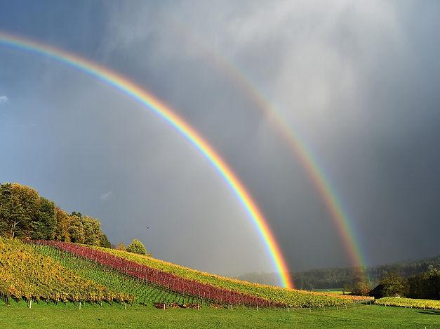 rainbow-2880471_1280.jpg