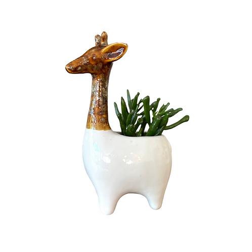 Giraffe Planter