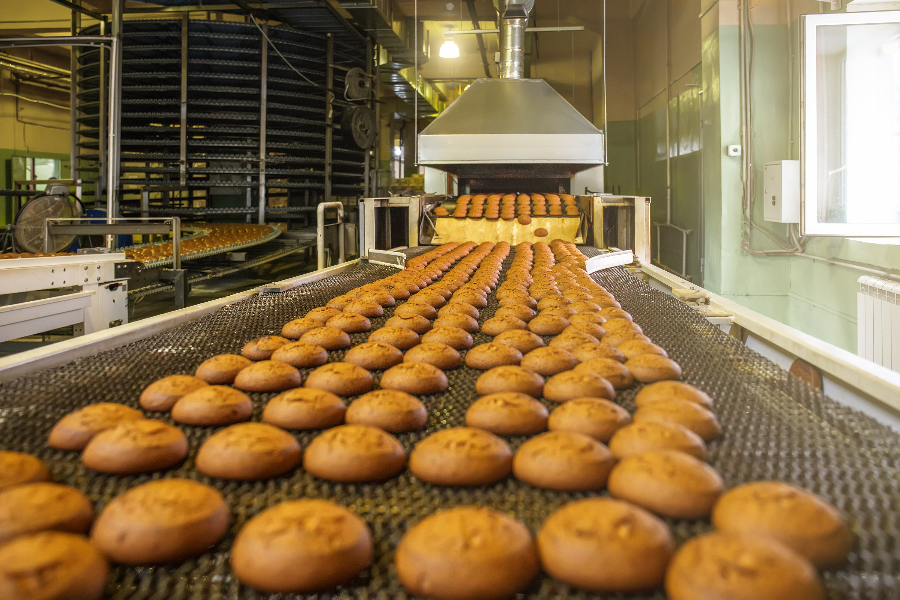 Automatic bakery production line with sw