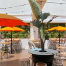 best-rooftop-bar-sydney.jpg