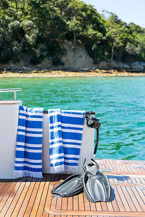 Private boat hire sydney