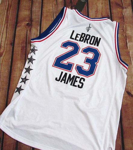 Adidas NBA All Star Game Lebron James Jersey