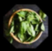 야채소개-이미지2.png