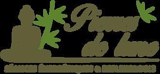 logo-PDL.png